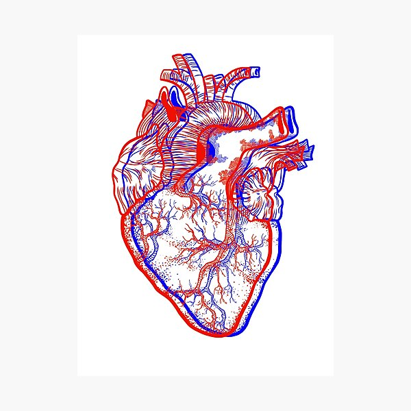 3D heart Photographic Print