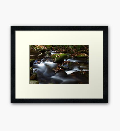 Soothing Waters Framed Print