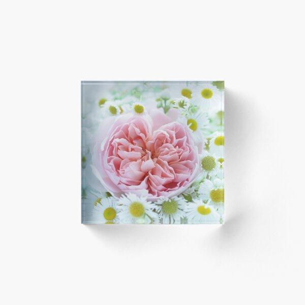 A Jolly English Rose Acrylic Block