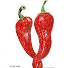 Two hot chillies by TrueInsightsNZ