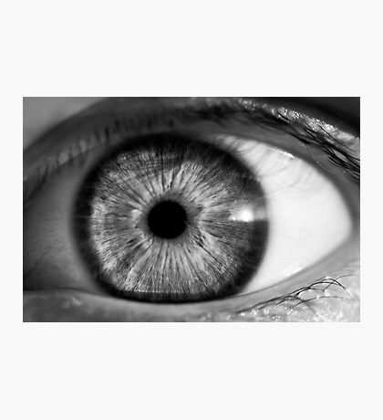 Eye contact Photographic Print