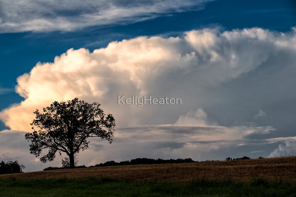 Rolling Clouds and A Tree by KellyHeaton