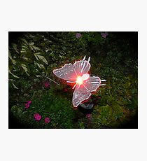 Fairy Land Night Scapes- Fairy Ferry Photographic Print