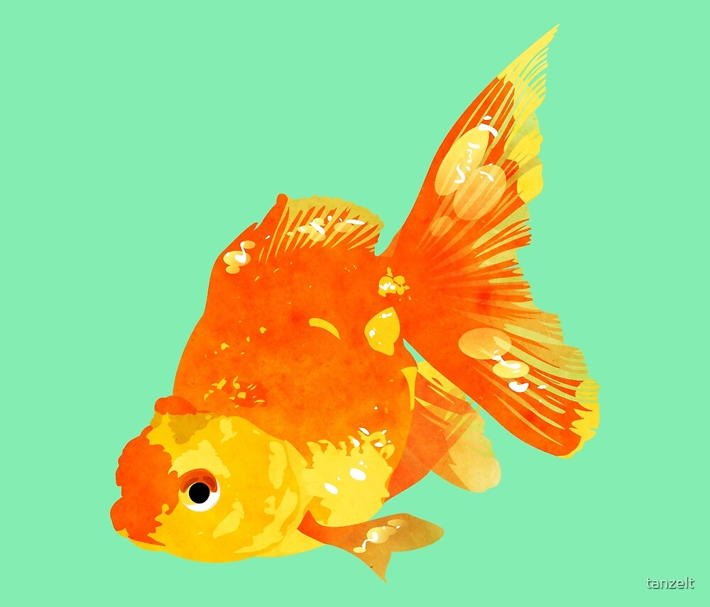 Goldfish 2.0 by tanzelt