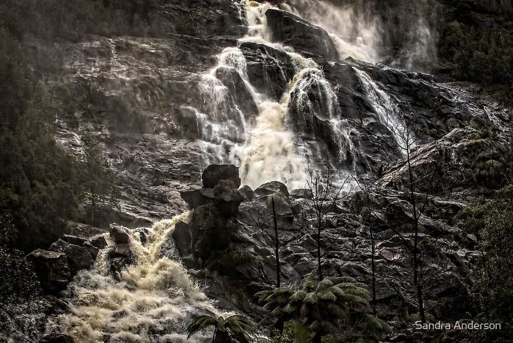 Wilderness Waterfall by Sandra Anderson