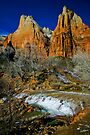 Zion Canyon The Patricarchs by photosbyflood