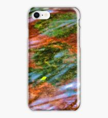 Water,Moss ,Rocks and Leaf iPhone Case/Skin