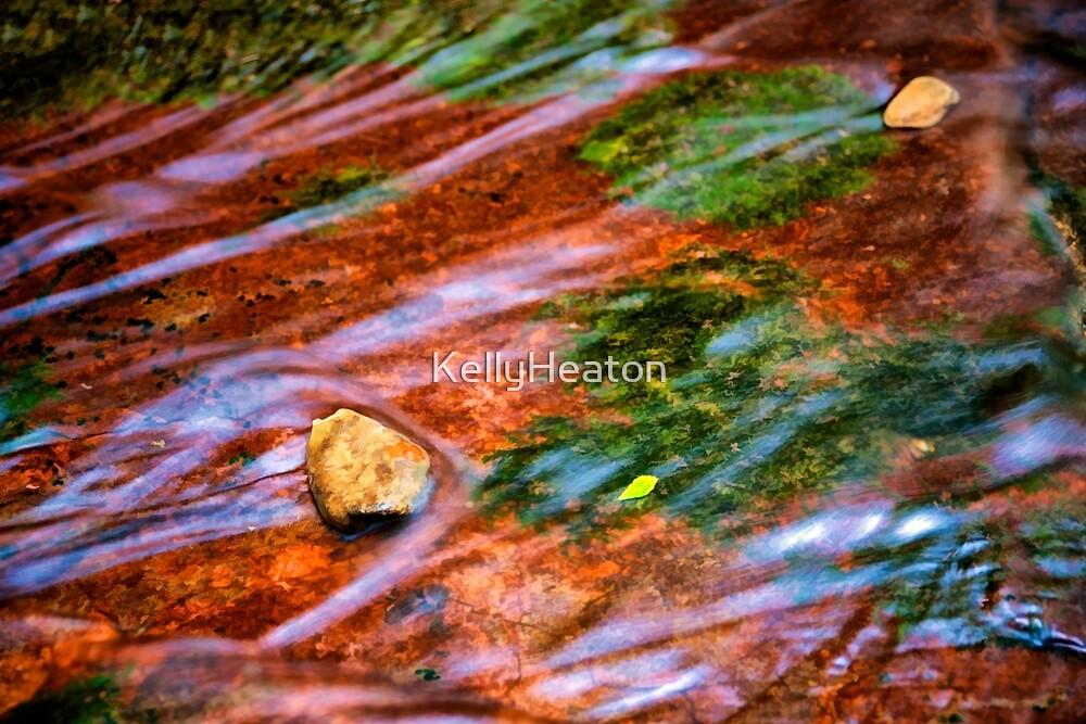 Water,Moss ,Rocks and Leaf by KellyHeaton