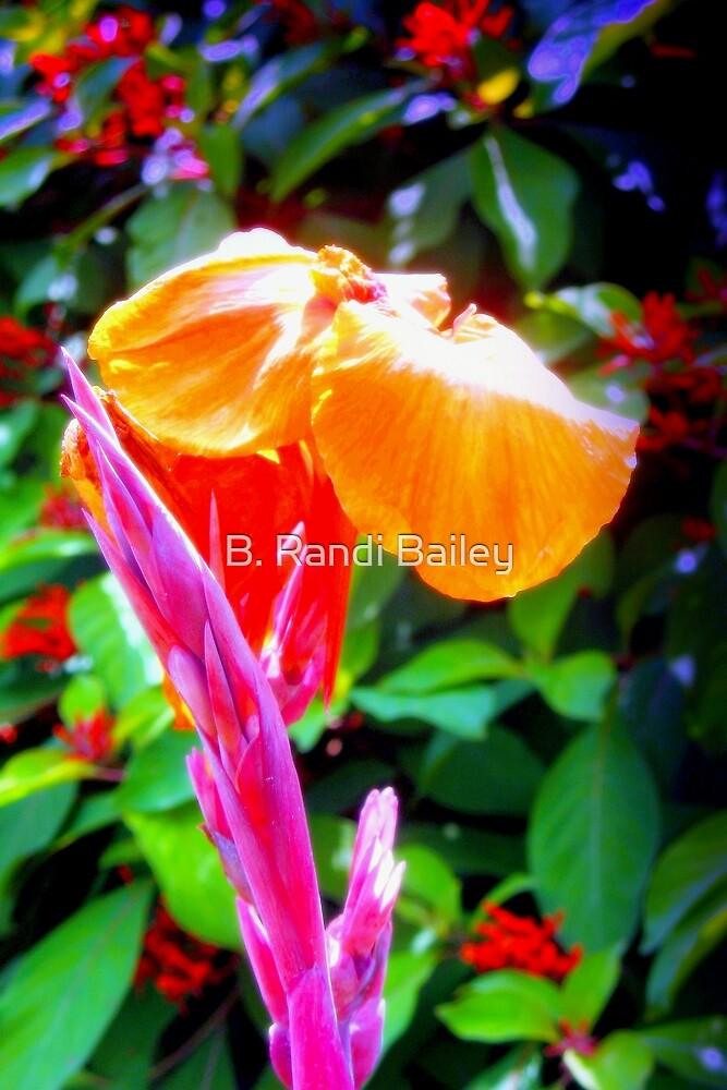 Flower spike and bloom by ♥⊱ B. Randi Bailey