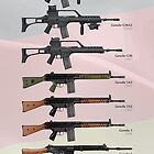 Service Rifles of Germany by nothinguntried