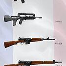 Fusils d'infanterie modernes by nothinguntried
