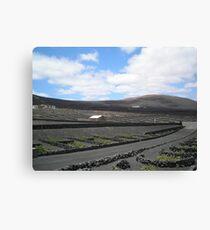 Vineyards in Lanzarote Canvas Print