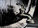 Barrel Tap  by Marcia Rubin