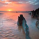 The Red West, Coombesgate, North Devon by Rob Dougall