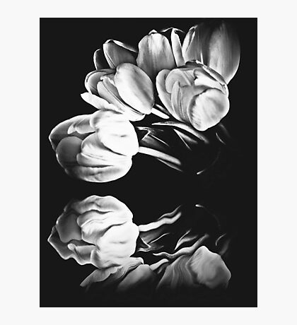 Floral Reflections Photographic Print