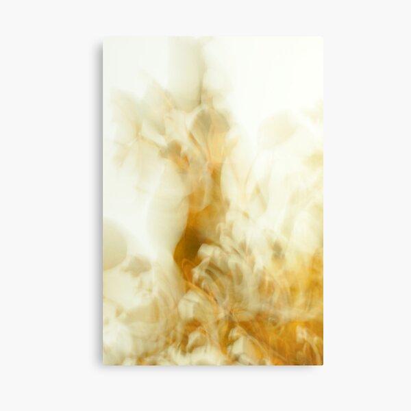 bric-a-brac Canvas Print