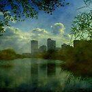 Lagoon © by Dawn Becker