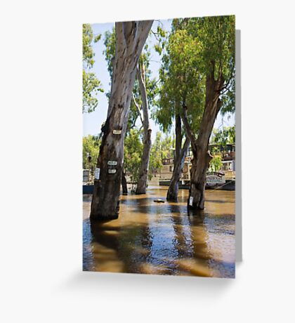 Echuca on The River Murray  Greeting Card