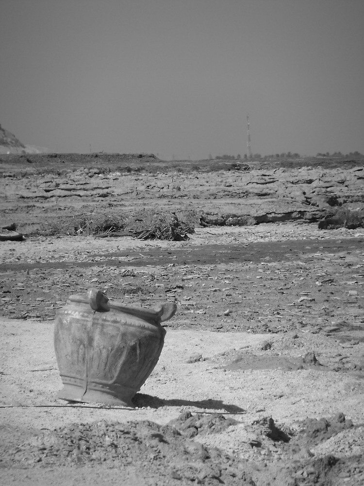 Old Vase and Dead Sea by Adam Isaacson