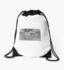 Kudu Mother and Child, Limpopo, South Africa Drawstring Bag