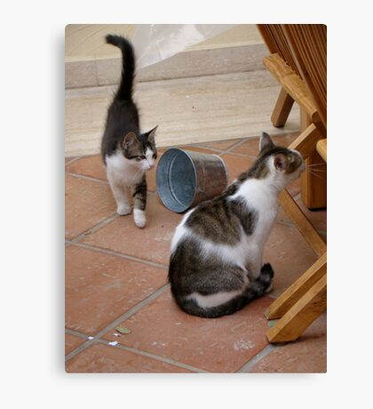 Curiousity Comes in Twos Canvas Print