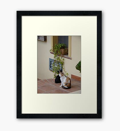 Two Friends Hanging Out Framed Print