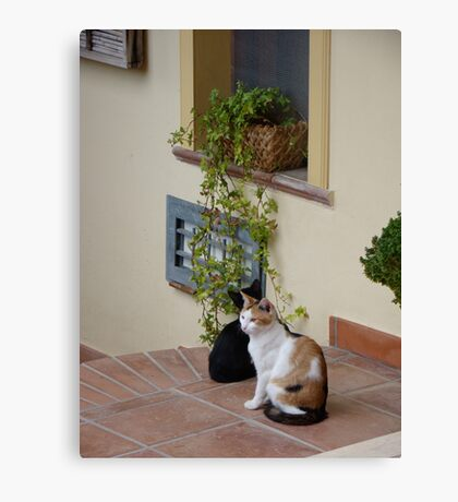 Two Friends Hanging Out Canvas Print