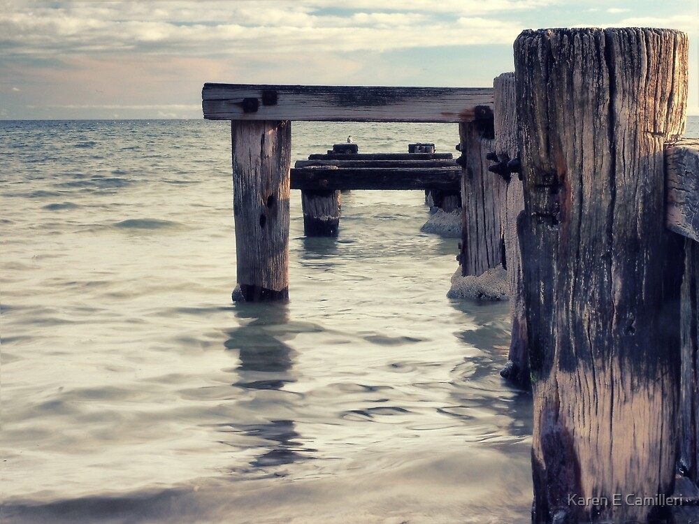 Wood and Water by Karen E Camilleri