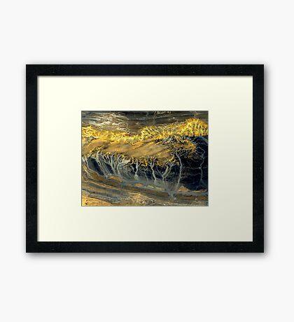 """Ghost Forest"" Framed Print"
