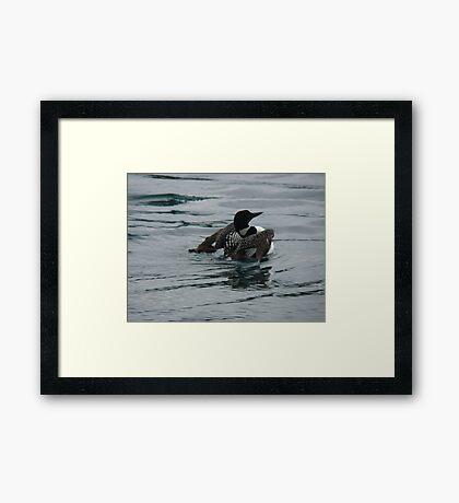 Watery Flight Framed Print
