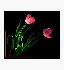 THINK PINK~ Photographic Print