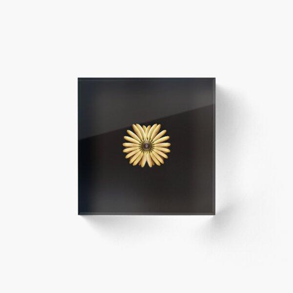 Sun Acrylic Block
