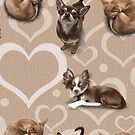 The Chihuahua by Elspeth Rose