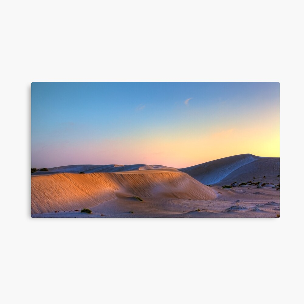 Summer out West Canvas Print