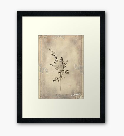 Little One Stands Alone © Framed Print