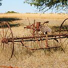 Old Farm Implements in Somervell County, Texas by Susan Russell