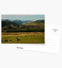 springtime Postcards
