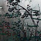 Sakura Door by Digby