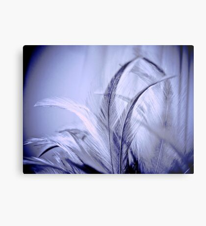 Her feathers and the moonlight: Sold, Got 2 Featured Works Metal Print