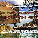 3D Landscapes Gone Digital Banner by plunder