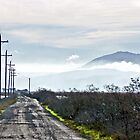 DRIVING DOWN THE GRAVEL ROAD by SMOKEYDOGSOCKS