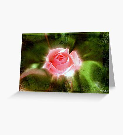 Spring Glow © Greeting Card