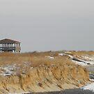 Winter Dunes by Sharon Woerner