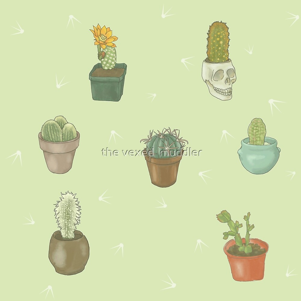 Cacti I Have Known by the vexed  muddler