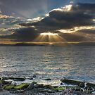 Wellington Harbour... by Mike Johnson
