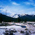 Winter in Morain Park, Rocky National Park by Daniel H Chui