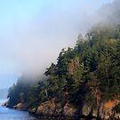 Galiano Island draped in morning mist by TerrillWelch