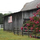 Hendersonville, Tennessee Barn and flowers. by Jimmie Roberson