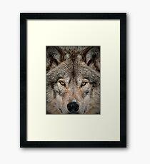 Shiver Me Timber Framed Print