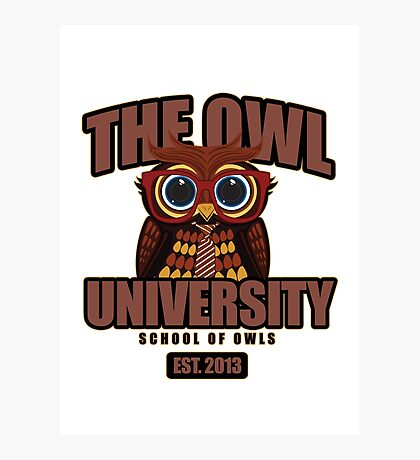 The Owl University Photographic Print